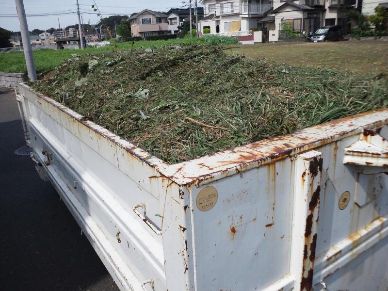 産業廃棄物や産廃の木パレットを破砕処理しチップとしてリサイクル・再利用します。木くずは業種指定もあり処分はお任せください